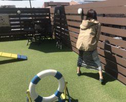 めいママと対峙!(ペロッ!)